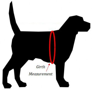 girth-measure-dog-harness